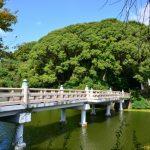 豊臣秀吉が築いた大阪城はなぜ破られたのか?